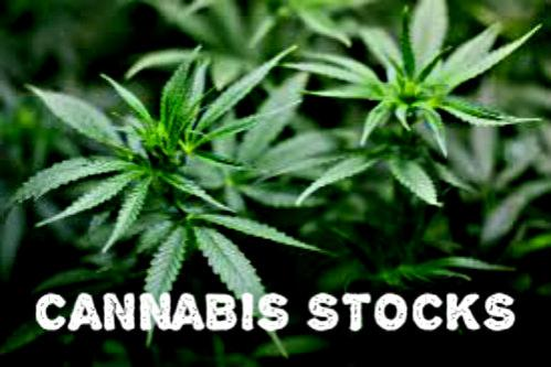 http://www.forex-central.net/forum/userimages/cannabis-stocks.jpg