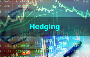 Hedging stock risk