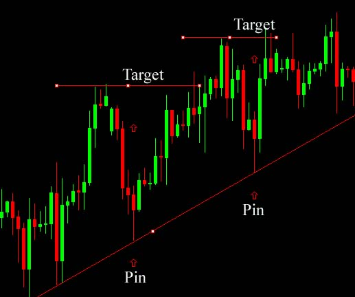 Trading pin bars forex